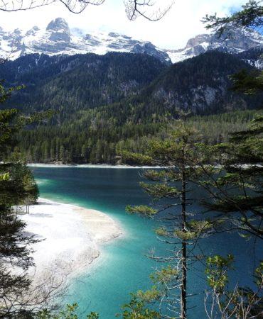 16087-Lago-di-Tovel-Michele-Zeni